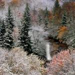 Falls in Snow